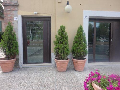 Soggiorno Lo Stellino - Siena - Book Now!