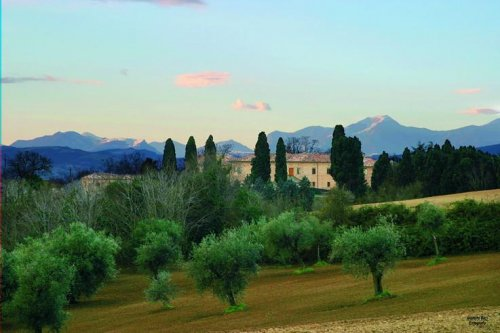 Villa San Martino Country House Saltara