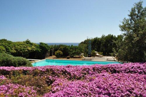 Villa with pool in Pantelleria