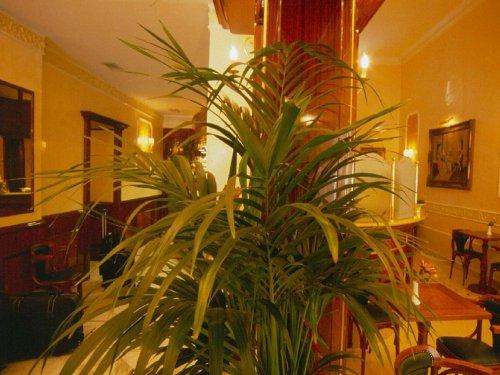Hotel Quisisana Roma Recensioni